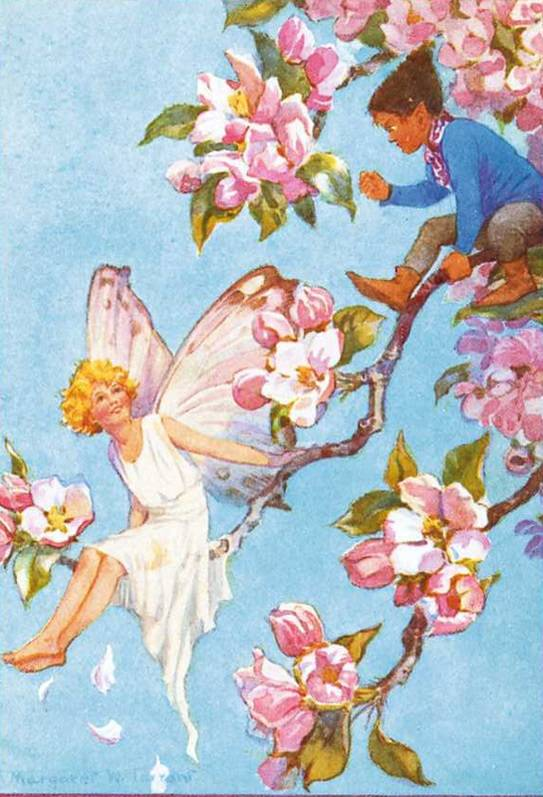 Medici Margaret W. Tarrant, 'Apple Blossom' PCE 218