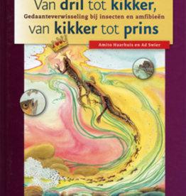 Amito Haarhuis, Van kikker tot dril, van kikker tot prins