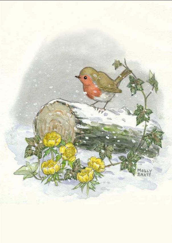 Molly Brett, Winter robin PCE 195