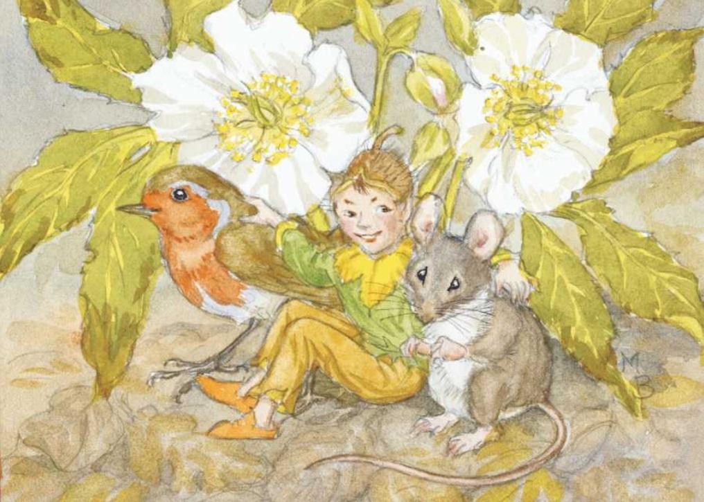 Molly Brett, 'Underneath a Christmas Rose' PCE 153
