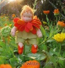 De Witte Engel De Witte Engel - Goudsbloem Bloemenkindje A461