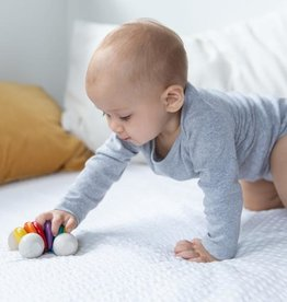 Plantoys Plantoys  Babyspeelgoed Houten baby Auto - Regenboog