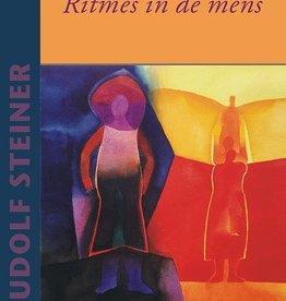 Rudolf Steiner, Ritmes in de mens