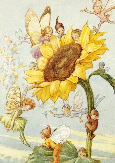 Margaret Tarrant, Sunflower with Fairies PCE 027