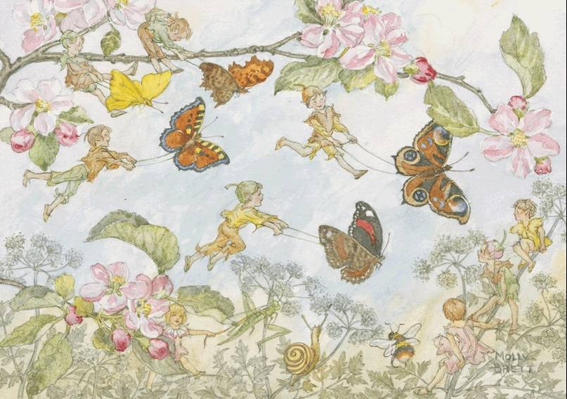 Molly Brett, The Butterfly Race PCE 050 Ansichtkaart