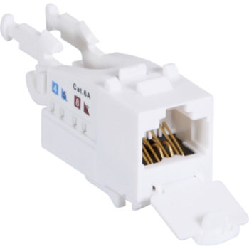 Utilizzare ws ITplus6 RJ45 / u Categoria 6A 10G m.Staubschutz