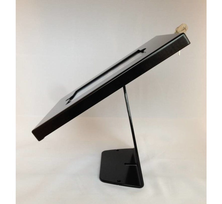 XL iPad Mini Wandhouder met anti-diefstal beveiliging