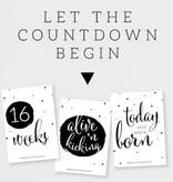 """Paqhuis """"Countdown"""" kaarten"""