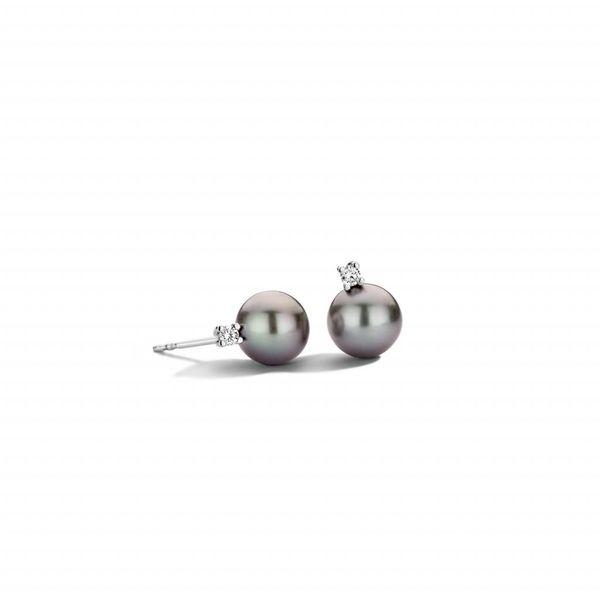 Pearls oorknoppen