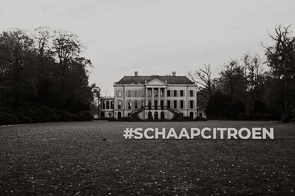 Schaap en Citroen Estate 2019 | Parc Broekhuizen