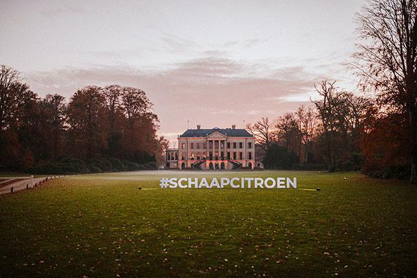 Foto's Schaap en Citroen Estate 2019