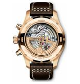 IWC Horloge Pilot's Watch 43mm Edition Le Petit Prince Perpetual Calendar IW392202