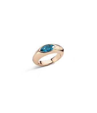 Schaap en Citroen Ring Colours