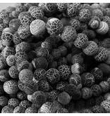 Achat Perle 8 mm - matt