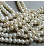 Zucht Perlen Strang