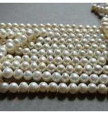 Zucht Perlen Strang 6,5 mm