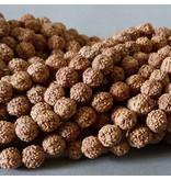 Rudraksha Samen Perle 8 mm