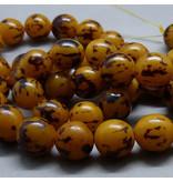 Buri Palmen Perle 10 - 12 mm