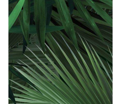 KEK Amsterdam Fond d'écran Tropical Palm feuille papier polaire verte 97,4x280cm