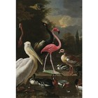 Arty Shock Peinture d'Hondecoeter Melchior - La plume flottante M multicolore Plexiglas 80x120cm
