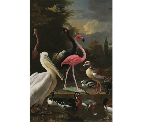 Arty Shock Painting melchior d'hondecoeter - the floating feather XL multicolor plexiglas 150x225cm