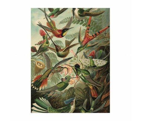 KEK Amsterdam Wand-Aufkleber-Set Welpen Mehrfarbenvinylfolie 42x59cm - Copy