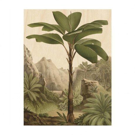 KEK Amsterdam Houten paneel  Banana Tree S 45x60cm