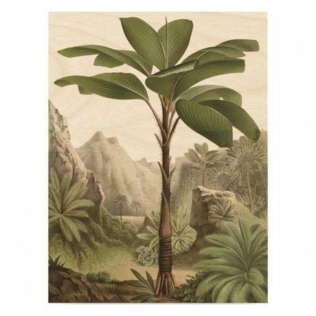 KEK Amsterdam Houten paneel  Botanical Banana Tree M 60x80cm