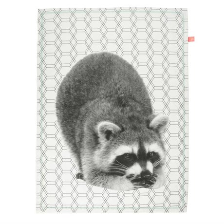 pt, Tea towel raccoon white cotton 50x70cm