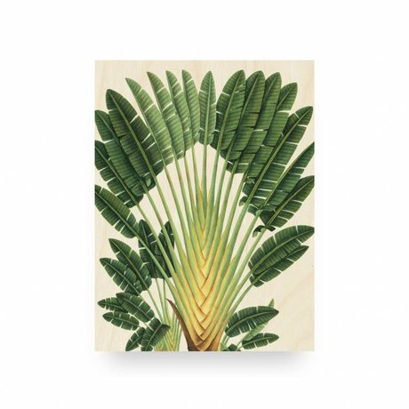 KEK Amsterdam Panneau en bois botanique Palm S 45x60cm