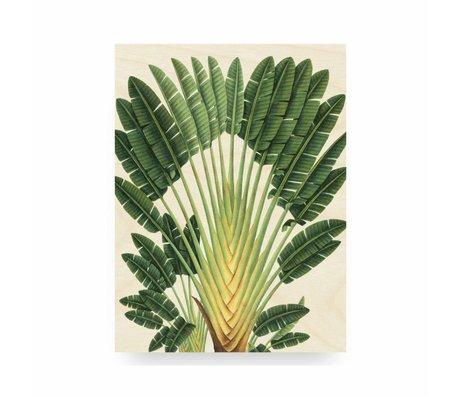KEK Amsterdam Panneau en bois botanique Palm M 60x80cm