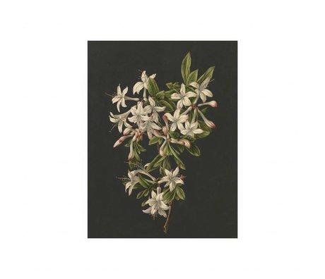 KEK Amsterdam Houten paneel Royal White Flowers 2 S 45x60cm