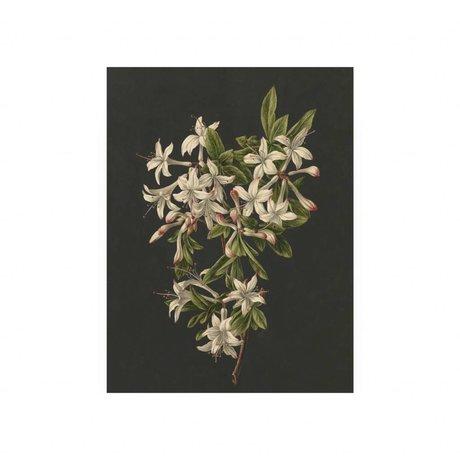 KEK Amsterdam Panneau de bois Royal White Fleurs 2 S 45x60cm