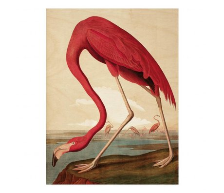 KEK Amsterdam Houten paneel Flamingo L 75x100cm