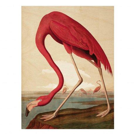 KEK Amsterdam Panneau en bois Flamingo L 75x100cm
