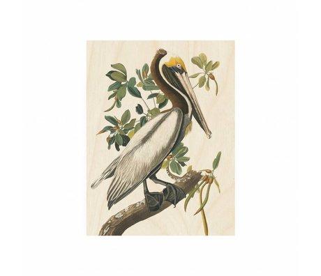 KEK Amsterdam Panneau en bois Pelican S 45x60cm