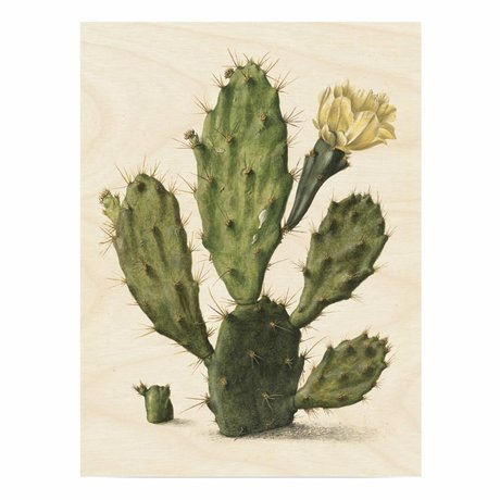 KEK Amsterdam Holzplatte Botanical Cactus L 75x100cm