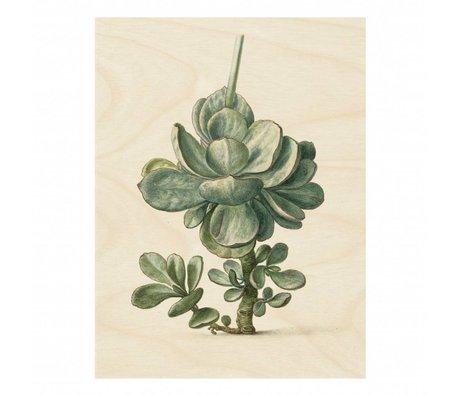 KEK Amsterdam Houten paneel Botanical Plant L 75x100cm