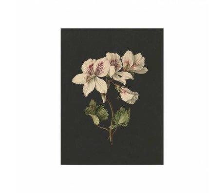KEK Amsterdam Holzplatte Weiße Blumen 1 S 45x60cm
