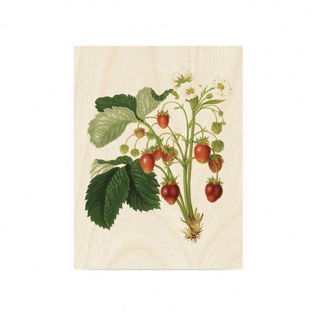 KEK Amsterdam Wooden panel Botanical Strawberries S 45x60cm