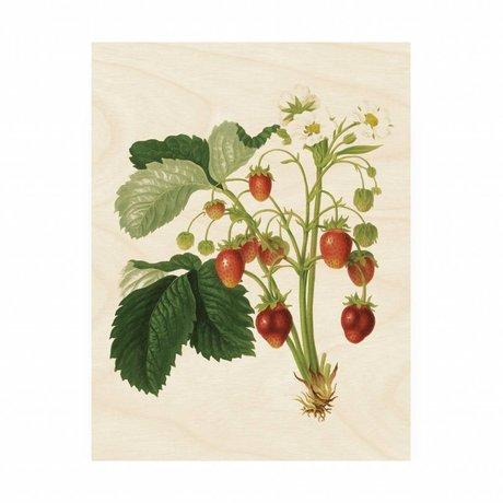 KEK Amsterdam Houten paneel Botanical Strawberries M 60x80cm