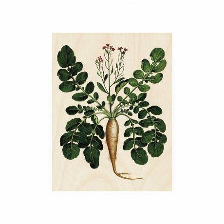 KEK Amsterdam Panneau en bois botanique Plant Root S 45x60cm