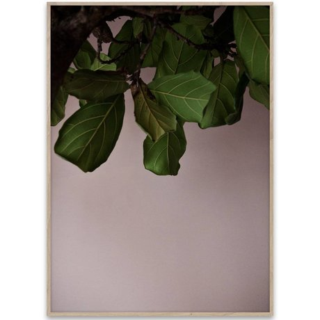 Paper Collective Poster Green Leaves groen papier 50x70cm