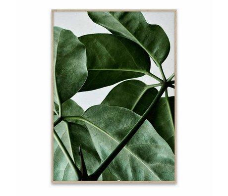 Paper Collective Poster Green Home 01 grün weißes Papier 40x30cm