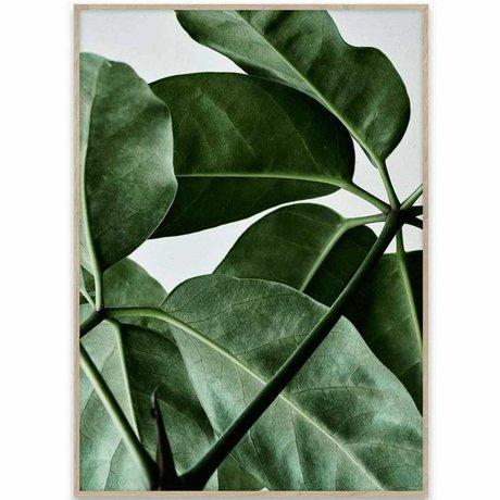 Paper Collective Poster Green Home 01 grün weißes Papier 70x50cm