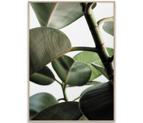 Paper Collective Poster Green Home 03 groen wit papier 70x50cm