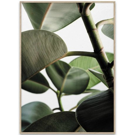 Paper Collective Poster Green Home 03 papier blanc vert 70x50cm