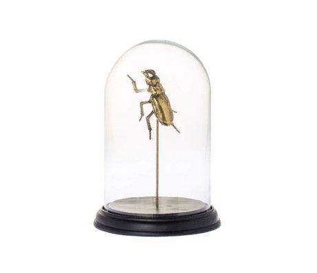 Riverdale Stolp Bug goud glas metaal Ø20x27cm