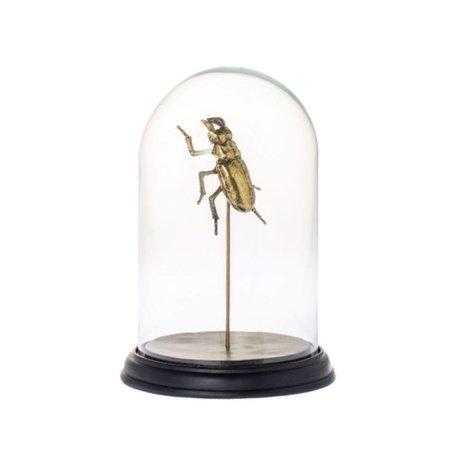 Riverdale Stolp Bug métal doré verre Ø20x27cm
