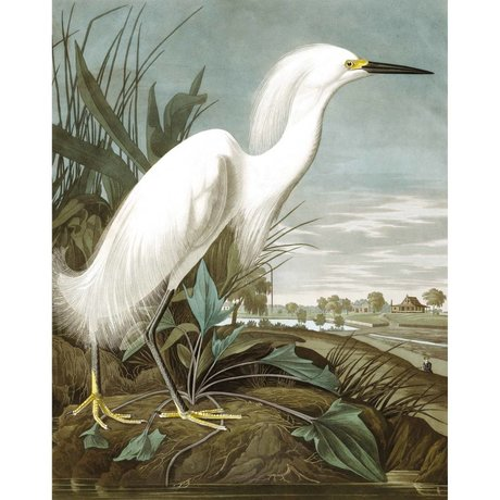 KEK Amsterdam Papier peint Panneau de papier peint intissé multicolore Snowy Heron 142,5x180cm